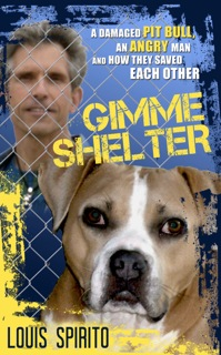 gimme-shelter-cover-copy_2